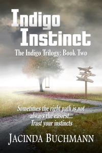 Indigo Instinct for Kindle(1)